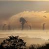 """""""中 탄소시장 커진다""""…'2060 탄소중립' 계획 본격화"""