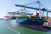美 선박 물류 지연 지속…'인력난·물동량 증가·터미널 적체 탓'